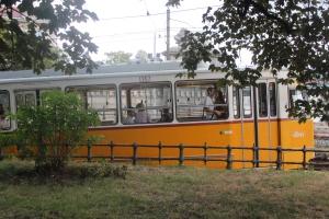 Tram Couple