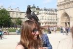Pigeon Head 2